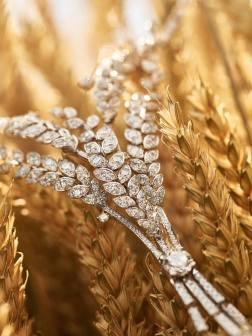 les blés de chanel2